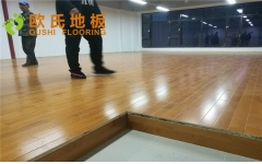 北京顺义地理信息科技园舞蹈房木地板图片